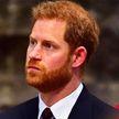 Принц Гарри сравнил жизнь в королевской семье с зоопарком и «Шоу Трумана»