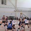 16 сентября определятся чемпионы Беларуси по волейболу среди мужских и женских команд