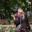 75-летие Победы: как проходит праздник в Минске