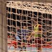 Тренировки мужской гандбольной сборной в Ратомке отменены из-за коронавируса