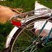 Странная картина в Пинске. На обочине лежали мужчина, косуля и велосипед
