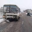 Легковушка столкнулась с рейсовым автобусом в Браславском районе