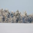 В Барановичском районе посреди поля обнаружили замерзшего мужчину