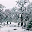 В Великобритании прошёл снегопад