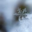 Морозы до 25°С ожидаются в выходные в Беларуси