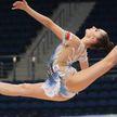 Завершается тестовый турнир по художественной гимнастике ко II Европейским играм в Минске: пока у белорусок – шесть наград