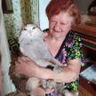 Кот укусил хозяйку за шею и спас ее от смерти, дом от пожара, а сам остался без шерсти