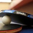 Новогодний турнир по настольному теннису прошел среди руководителей силовых структур