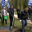 В Беларуси стартовала акция «Сад Победы»