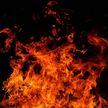 Мужчина погиб на пожаре в частном доме в Добрушском районе