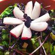 Салат из красного редиса. Полезный весенний рецепт