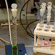 Разрушит и раковые клетки, и повреждённые ткани: белорусские учёные ведут разработку уникального препарата
