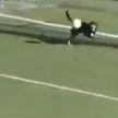 Собака выбежала на поле и выбила мяч с линии ворот во время футбольного матча в Аргентине (ВИДЕО)