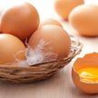Как выбрать качественные яйца и о чем говорит цвет желтка, рассказала диетолог