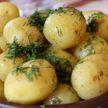 На главную ошибку в приготовлении картофеля, которую допускают многие, указал врач