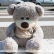В Молодечно 8-летняя девочка попала под колеса автомобиля