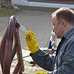 Общереспубликанский субботник проходит сегодня в Беларуси