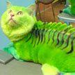 Смертельно опасным животным может быть даже Ваша кошка