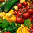 Ученые: вегетарианская и веганская диеты повышают риск инсульта