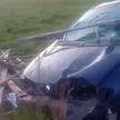 Renault снесло 60 м деревянного забора: элемент фермерской ограды пронзил автомобиль насквозь