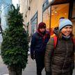 По Нью-Йорку гуляла живая «ёлка» (ФОТО)