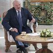 Лукашенко: События с самолетом Ryanair – заранее спланированная провокация
