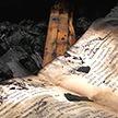 Намоленное место: судьбу сгоревшей церкви решают в Кобринском районе