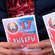 Избирательная кампания-2019: активисты молодёжных движений проводят предвыборные пикеты