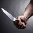 Мужчину из Витебской области будут судить сразу по пяти статьям Уголовного кодекса