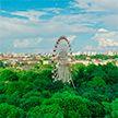До +36°C, возможны дожди: оранжевый уровень опасности объявлен в Беларуси на 17 июля