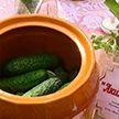 День огурца отмечают в Шклове: рецептом варенья из зелёного овоща делятся с гостями