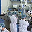 Антитела, способные победить COVID-19, создали ученые из Нидерландов