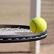 Состоялись матчи 1/4 финала теннисного турнира в Чехии