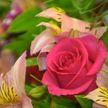 Море цветов и огромная благодарность за работу в период COVID-19: праздник организовали для медработников в Витебске