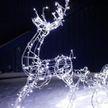 «Праздник к нам приходит»: новогоднюю иллюминацию в Минске включат 14 декабря