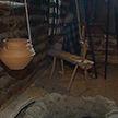 В Беловежской пуще появился археологический музей под открытым небом
