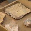 Уникальную находку XII века обнаружили в Полоцке у стен Спасо-Преображенского храма