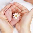 В Бразилии женщина стала суррогатной матерью и родила двойню для 24-летнего сына