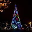 Фотофакт: на главной ёлке в Минске засияли огни