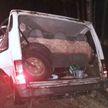 В Гомельской области пьяный водитель съехал в кювет и врезался в дерево