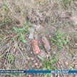 Житель Барановичского района нашел в саду два снаряда времен Великой Отечественной войны