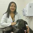 Пес сам обратился в клинику за помощью и удивил ветеринаров (ВИДЕО)