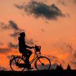Минск попал в топ-3 самых велосипедных городов СНГ