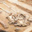 Тысячелетнюю гробницу нашли на юго-западе Китая