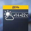 Туман и до +22°С: погода на 22 октября