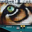 Поезд с изображениями исчезающих животных появился в Европе (ФОТО)