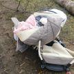 Названы причины ДТП с участием лесовоза в Ружанах, где погиб грудной ребенок и его бабушка