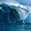 Двух сёрферов покусала акула во Флориде