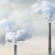 Ученые назвали процент людей на Земле, которые дышат загрязненным воздухом