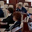 План работы депутатов Палаты представителей VII созыва на первом заседании